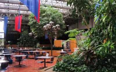 An introduction to Biophilic Design.